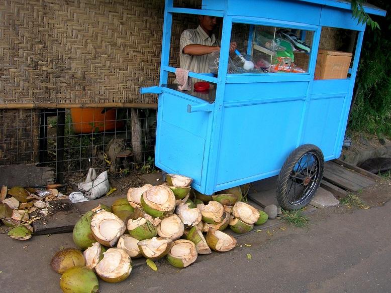 ココナッツ1