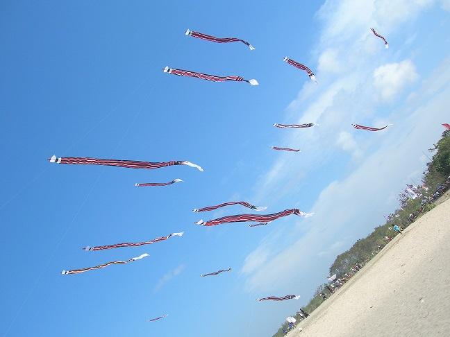 凧114-08-13